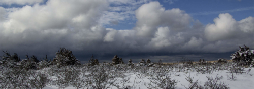 Cape Cod Events-Winter Paynes Creek Clouds