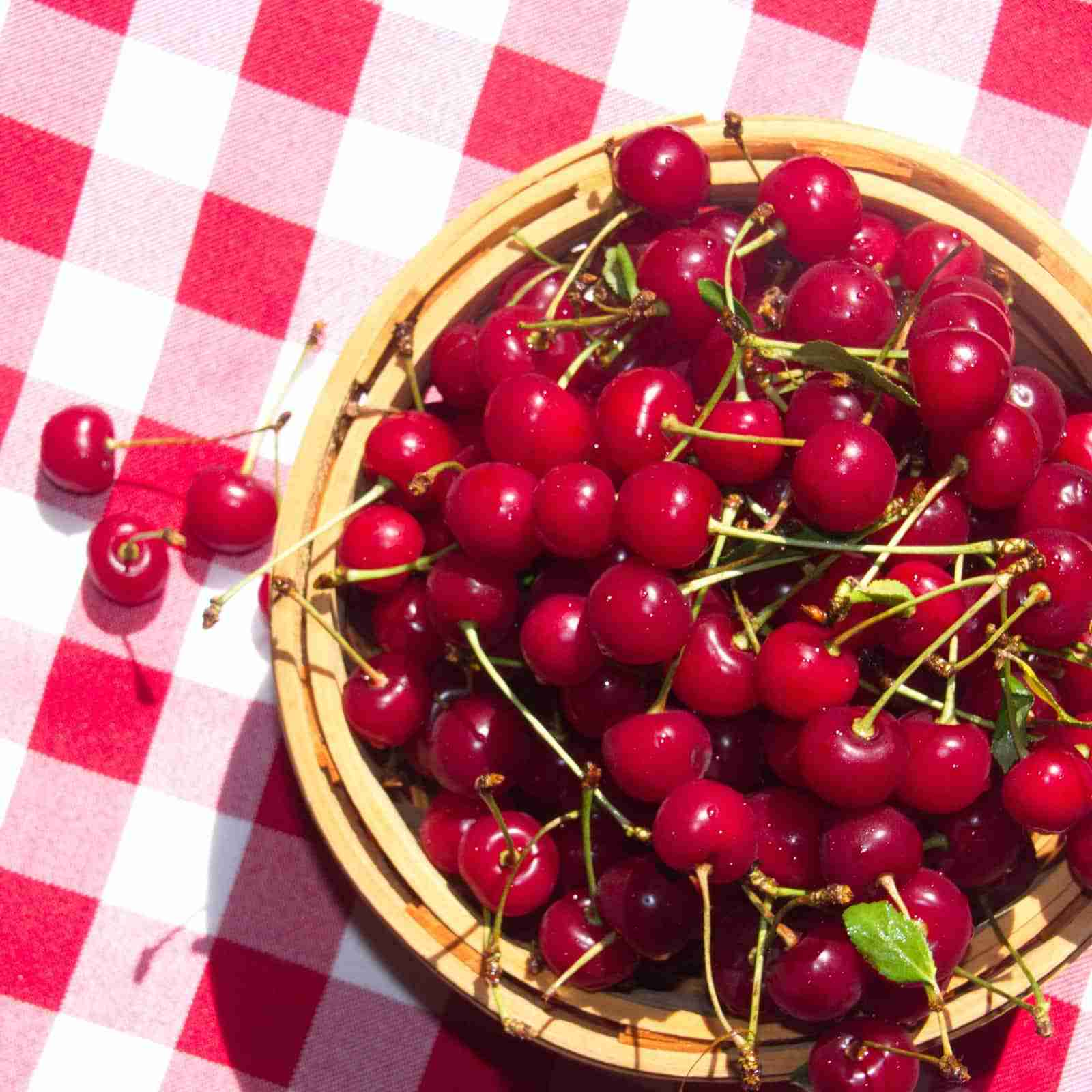 Cape Cod Farmers Market Gingham Cherries